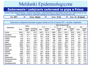 meldunek epidemiologiczny