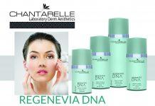 Chantarelle Regenevia DNA