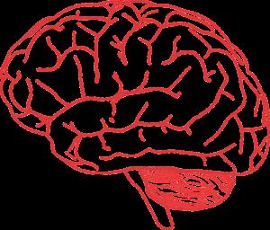 nowotwór mózgu