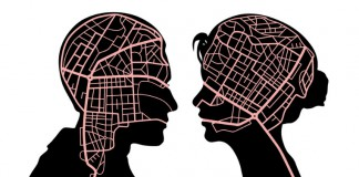 roznice-w-budowie-mozgu-kobiety-i-mezczyzny