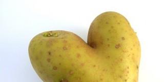 tajemnice-ziemniaka