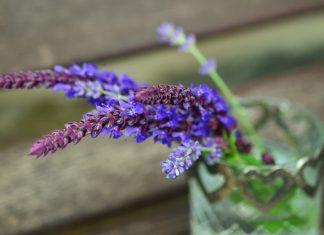 menopauza naturalnie