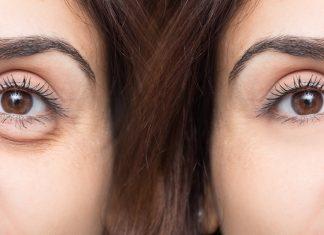budowa oka człowieka