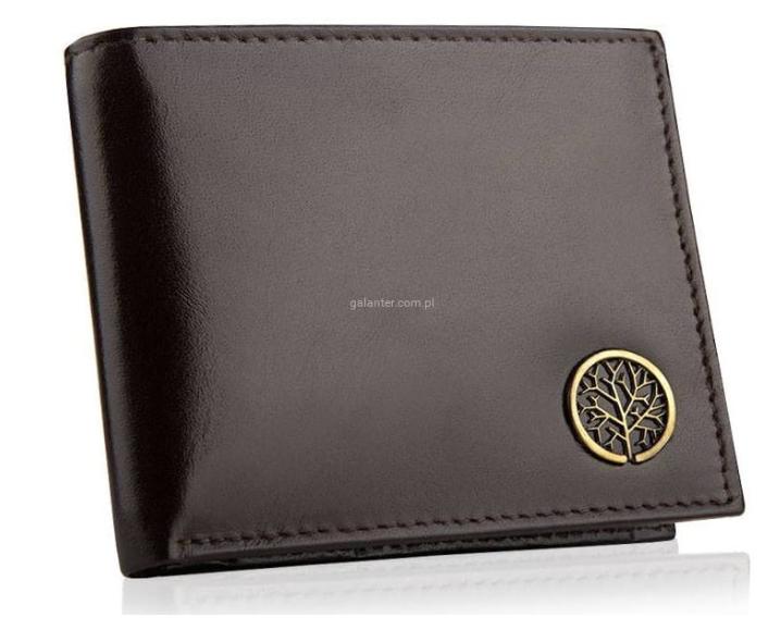 Betlewski elegancki skórzany portfel