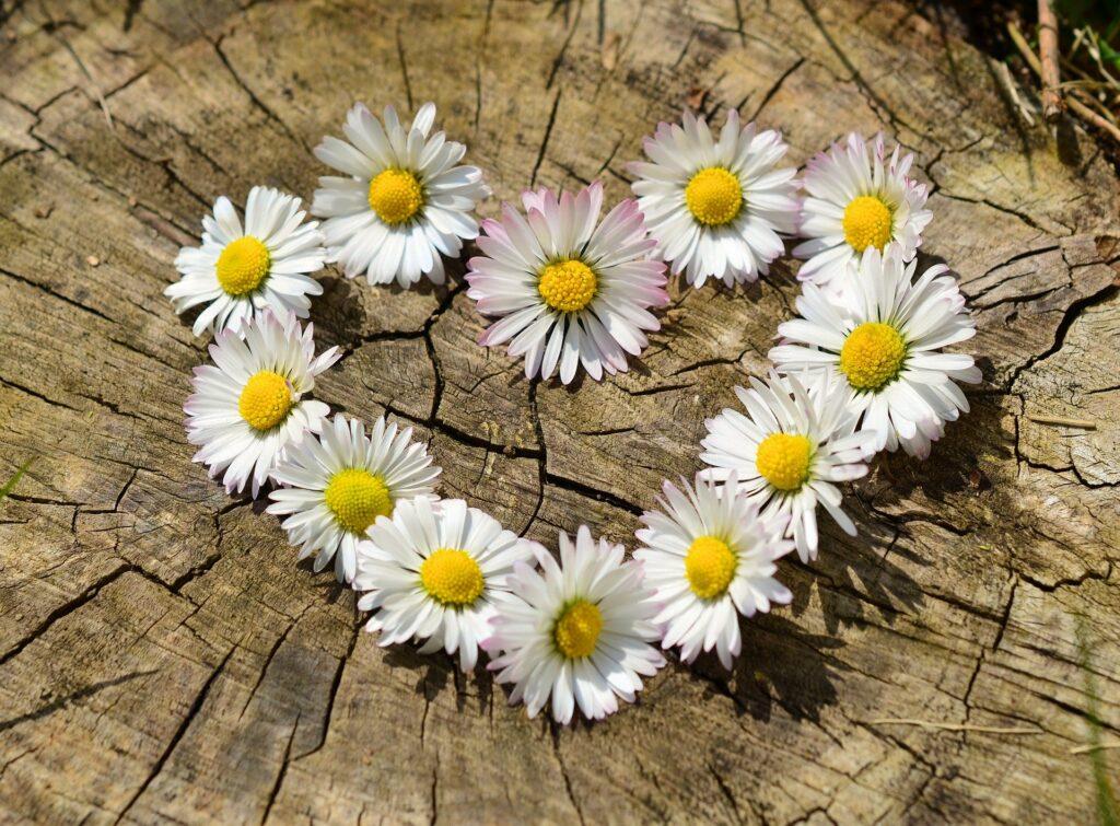 Jak stworzyć związek pełny miłości