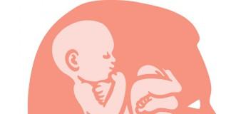 umysl-kobiety-ktory-zostal-ponownie-mama