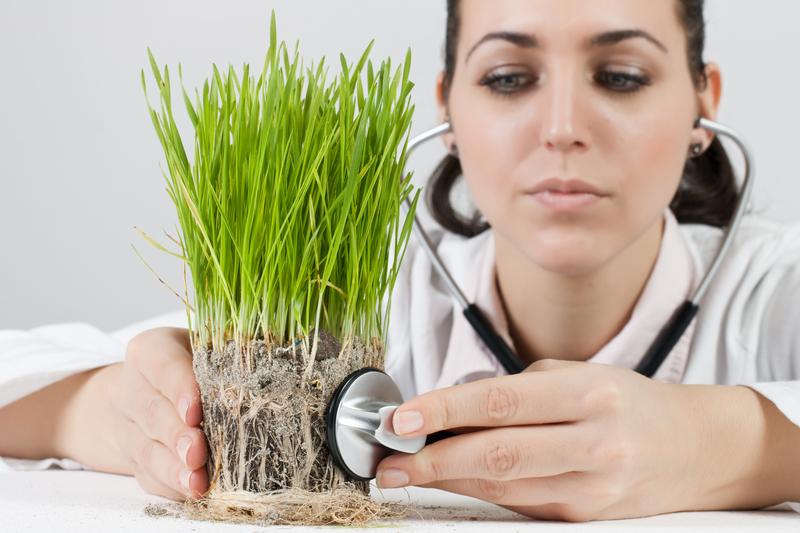 homeopatia-podstawowe-informacje