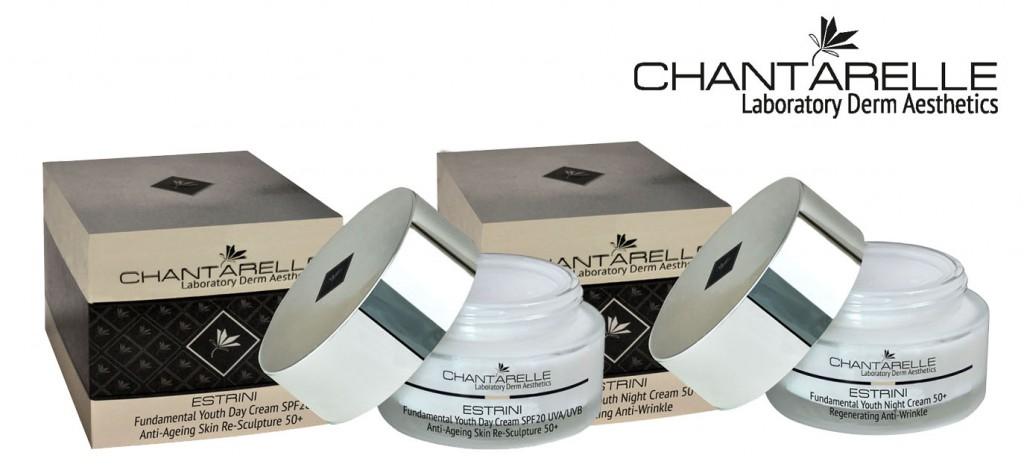 rozwiazanie-konkursu-chantarelle