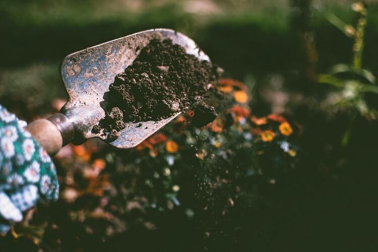 Odświeżanie gleby