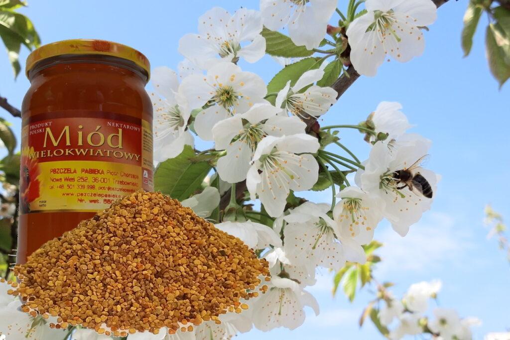 Jak pyłek pszczeli wpływa na menopauzę